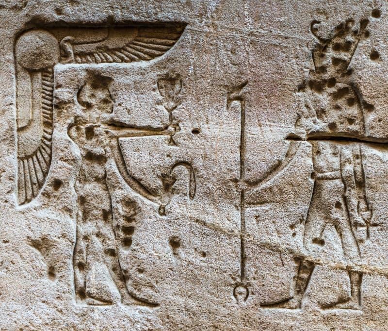 hieroglify ilustracji