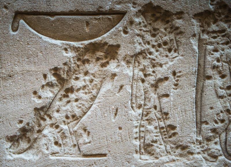 hieroglify royalty ilustracja