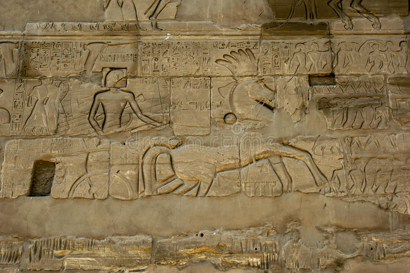Hieroglify i ulgi rzeźbili w ścianę przy Karnak świątynią & x28; Świątynia Amun& x29; w Luxor, Egipt fotografia royalty free