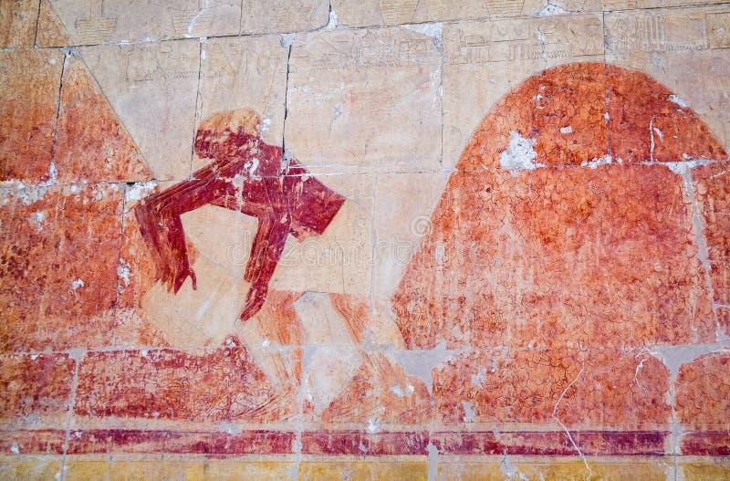 Hieroglify w świątyni Hatshepsut fotografia royalty free