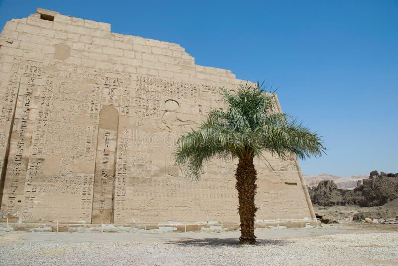 Hieroglyphic carvings på en egyptisk tempelvägg arkivbilder