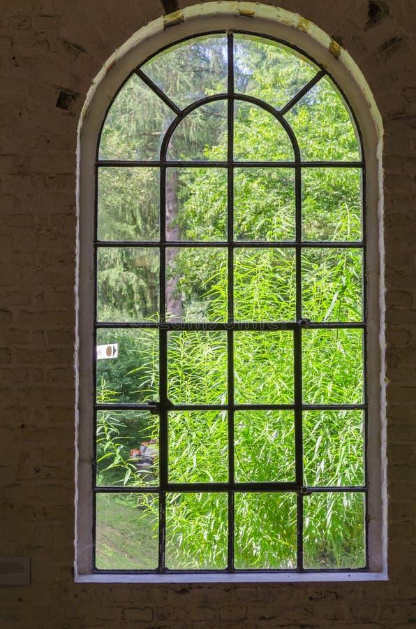 Hierro, acero, brote, ventana de la planta fotos de archivo