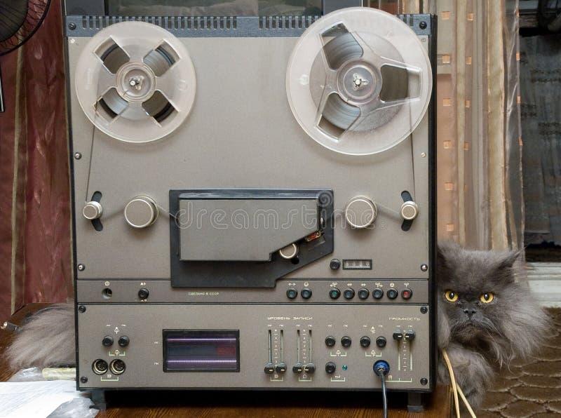 Hifi- stereo- bandspelare och katt royaltyfria foton