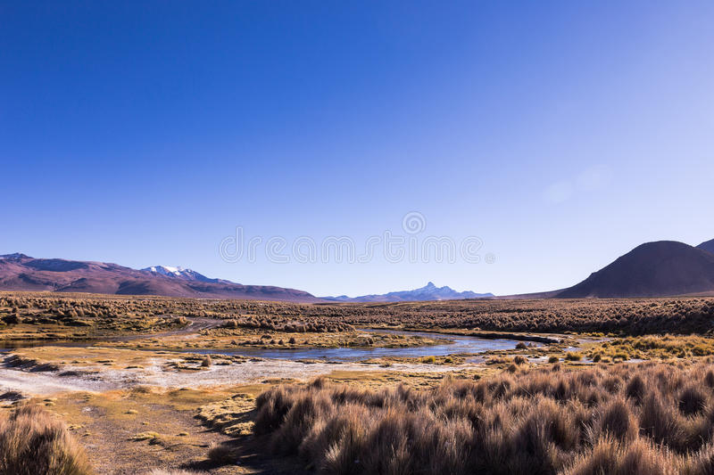 High Andean tundra landscape in the mountains of the Andes. stock image