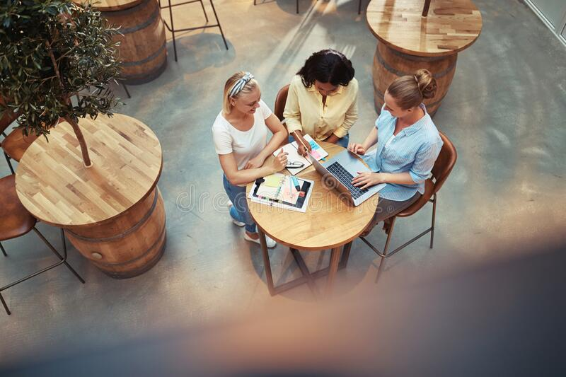 Smiling group of diverse businesswomen working in an office cafe royalty free stock image