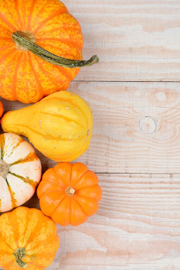 High angle still life of autumn decorative pumpkins and gourds stock images