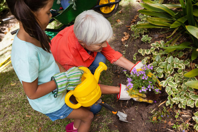 High angle view of girl standing with watering can by grandmother planting stock images