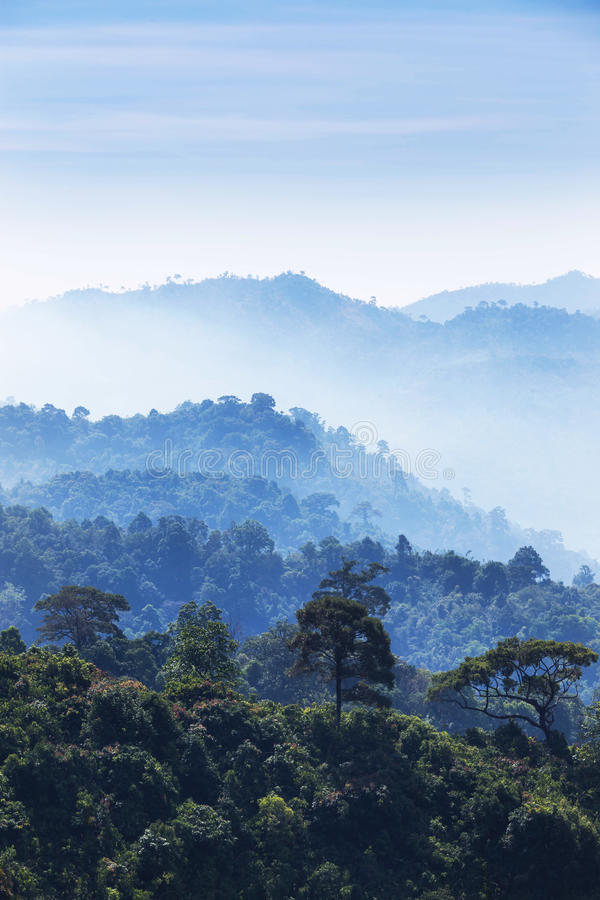 High angle view of layer tropical mountains with white fog. In Thailand royalty free stock images