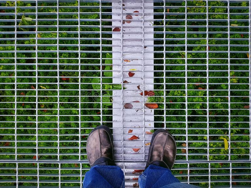 High Angle View of Man in Casual Clothing Standing on Metal Grate Floor with Green Plants Underneath stock photo