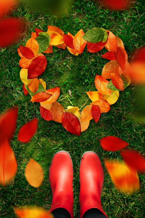 Free High Angle View Of Woman In Red Rubber Boots Look Down On Heart Shapes Autumn Leaves On Green Grass Royalty Free Stock Photography - 102244787