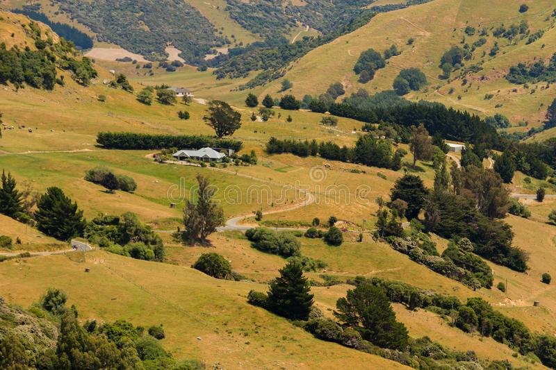 High angle view over green field mountain slope. New Zealand natural landscape stock image