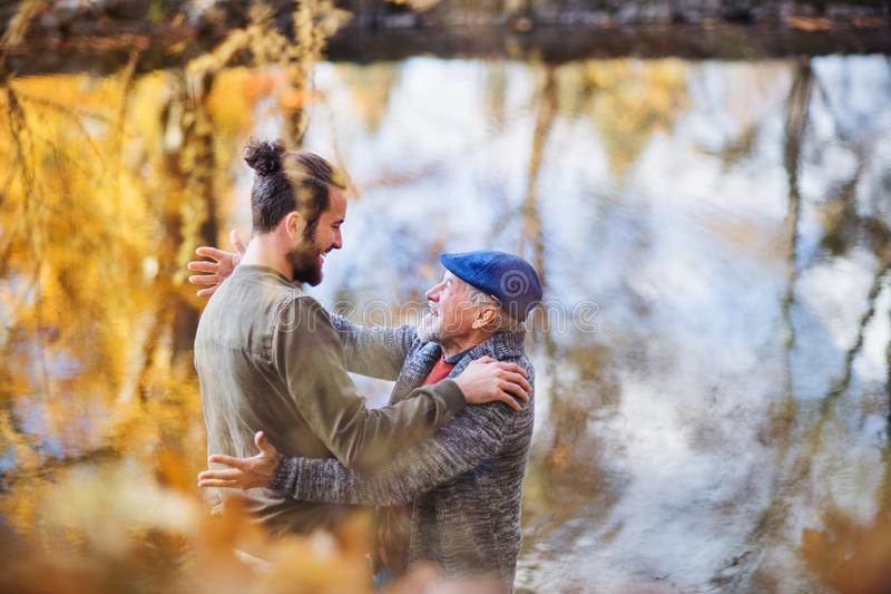 High angle view of senior father and his son standing in nature, talking. A high angle view of senior father and his son standing in nature, talking stock photos