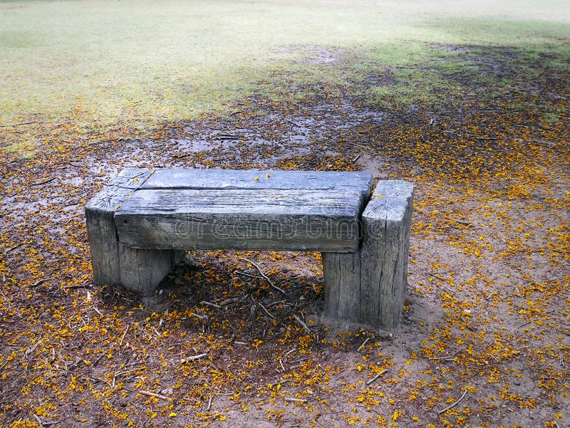 Close-up Wooden Bench Against Wet Green Grass Field and Dry Yellow Flowers stock photos