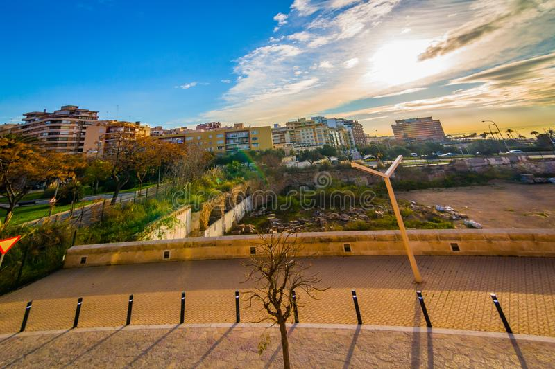 Palma with a wide angle lens royalty free stock photo
