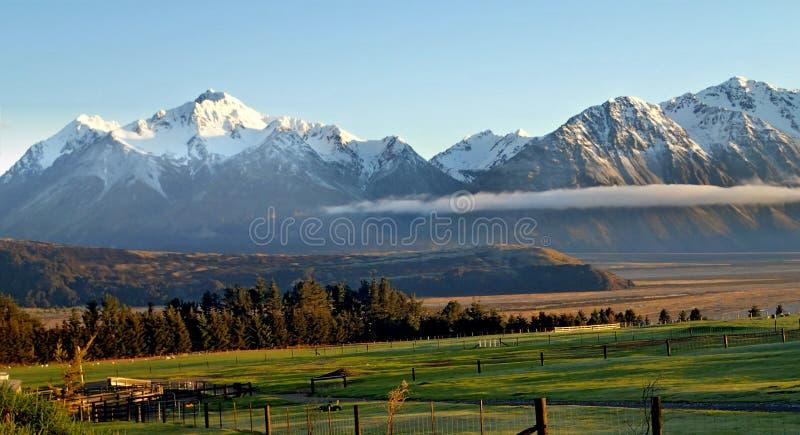High Country Farm, New Zealand stock photo