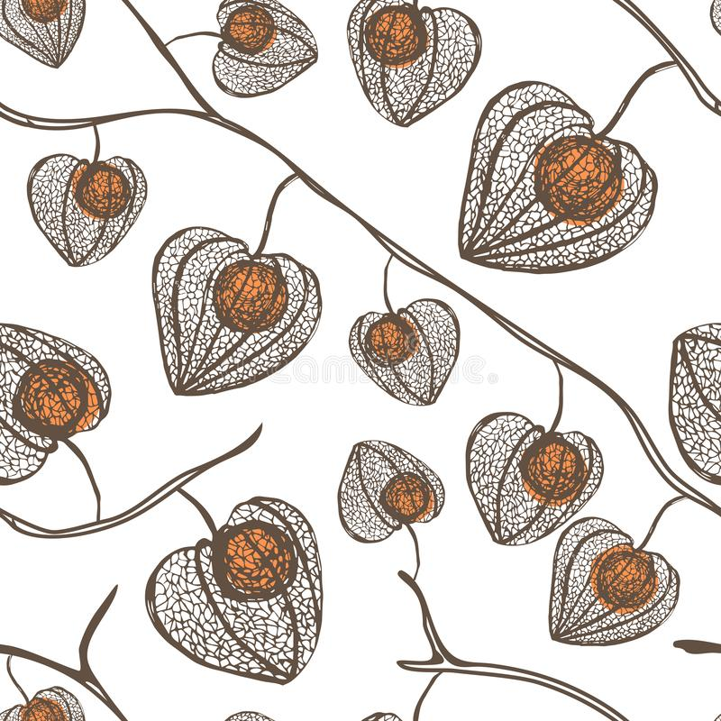 High detail physalis vector seamless pattern. Plant with orange berries. vector illustration