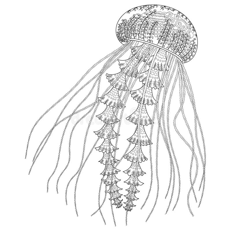 Jellyfish Coloring Stock Illustrations 917 Jellyfish Coloring Stock Illustrations Vectors Clipart Dreamstime