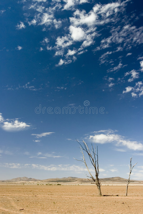 High and Dry. Flinders Ranges, Australia royalty free stock photos
