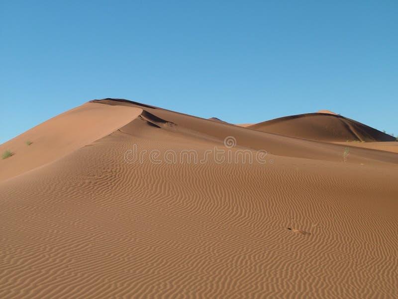 High Dunes in the Desert stock images