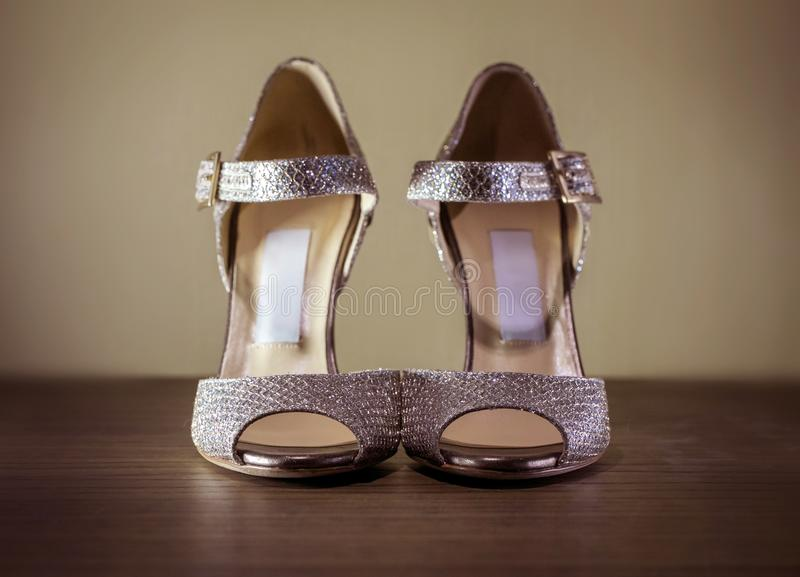 High Heel Silver Luxury Shoes royalty free stock photography