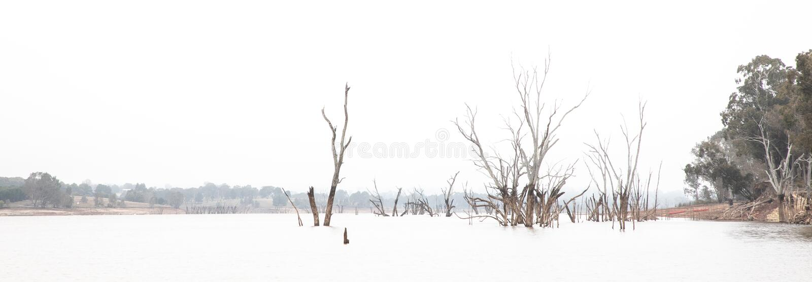 High key photo of Lake Nillahcootie, Victoria, Australia. High key photo of Lake Nillahcootie in Victorian countryside, Australia, landscape mode, with copyspace royalty free stock photography