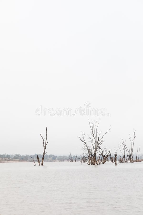 High key photo of Lake Nillahcootie, Victoria, Australia. High key photo of Lake Nillahcootie in Victorian countryside, Australia, landscape mode, with copyspace stock photo