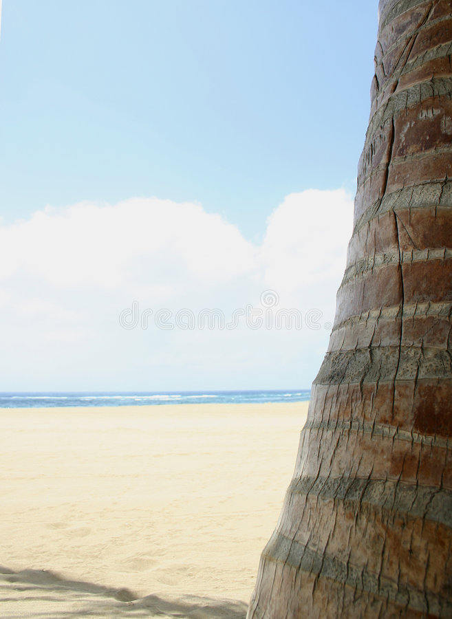 High Key Tropical Beach royalty free stock images