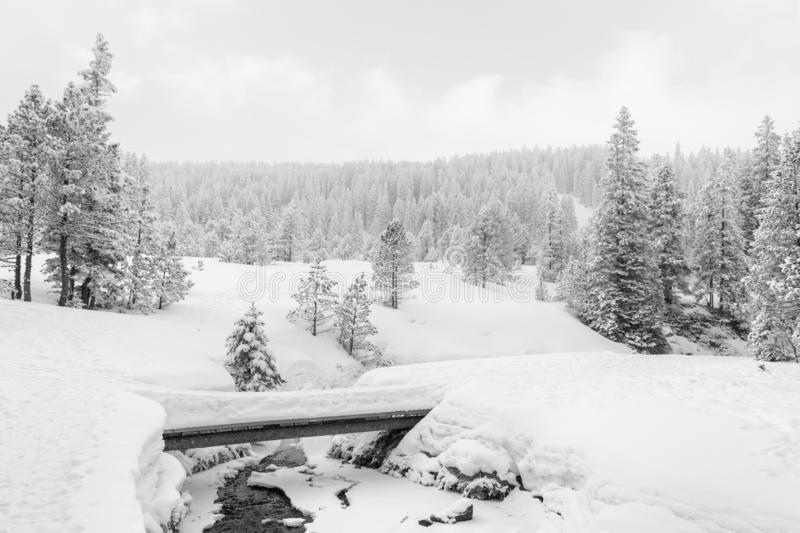 High-key winter landscape with a bridge and a stream. In the foothills of Switzerland stock image