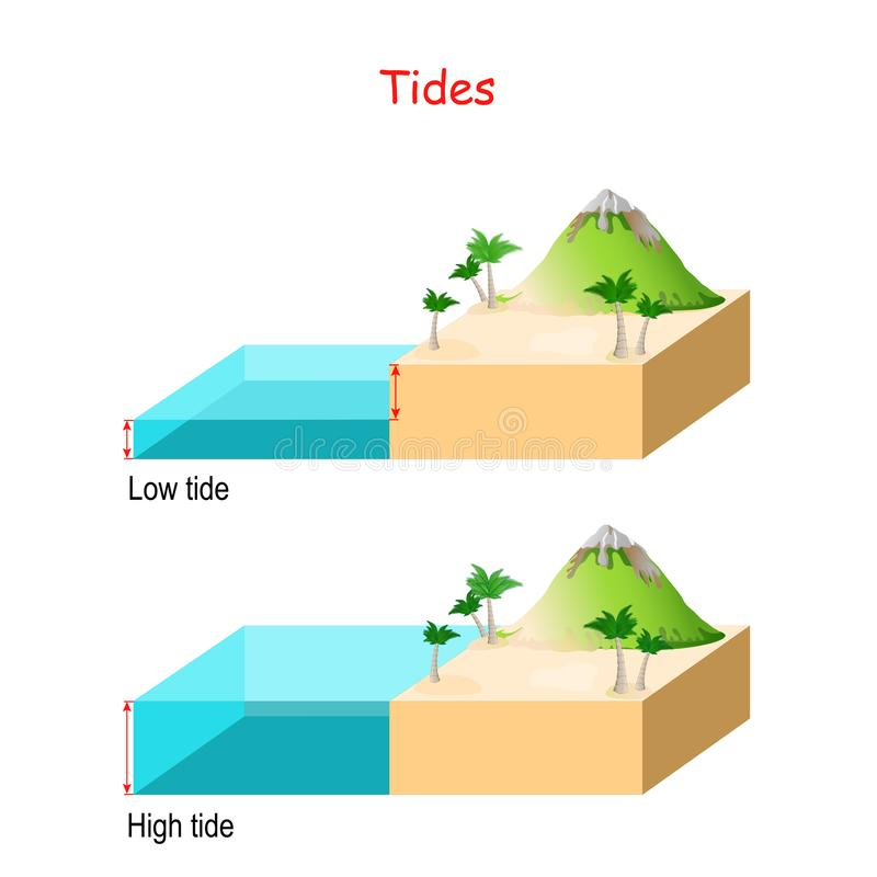 High and low tides. water level. High and low tides. Landscape with mountain, sea and palm trees. water level vector illustration