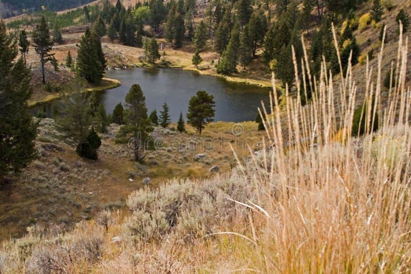 High mountain fishing lake royalty free stock images