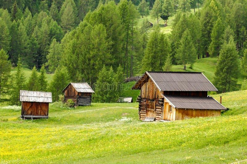 High mountain pasture. Italy - Trentino Alto Adige - San Martino in Badia (Sankt Martin in Thurn in German, San Martin de Tor in Ladino) is an Italian town of 1 royalty free stock photo