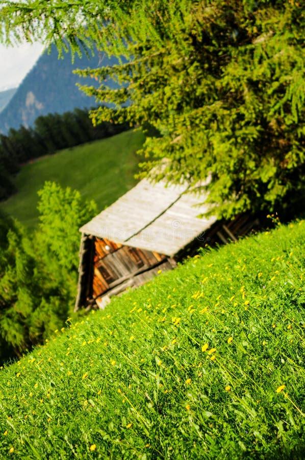 High mountain pasture. Italy - Trentino Alto Adige - San Martino in Badia (Sankt Martin in Thurn in German, San Martin de Tor in Ladino) is an Italian town of 1 stock photography