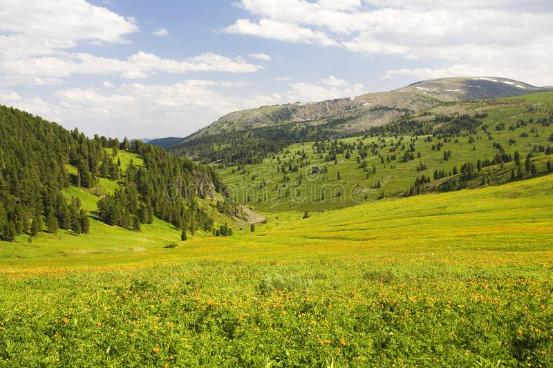 Download High Mountain's Summer View Stock Photo - Image: 6411556