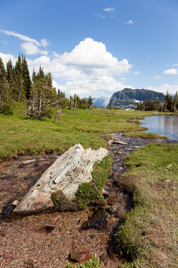 Download High Mountain Stream stock photo. Image of elevation - 23943104