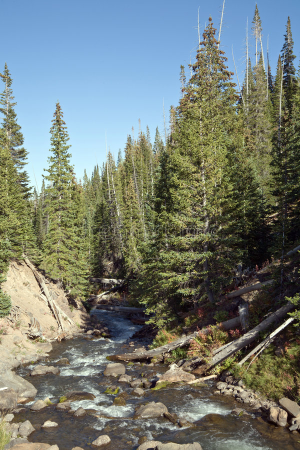 High Mountain Stream Royalty Free Stock Images