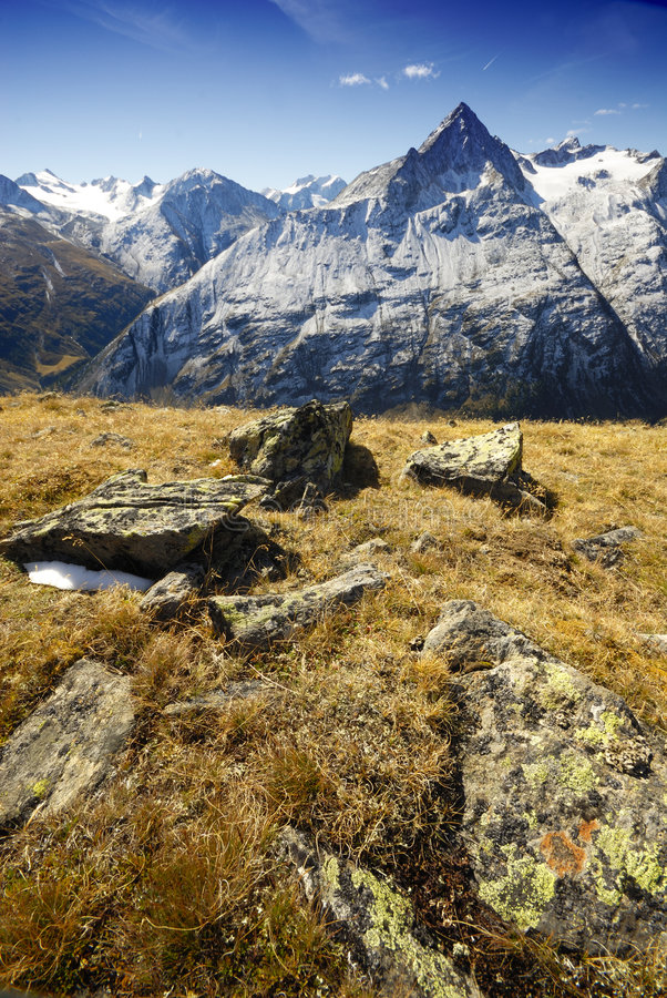 High mountaines meadow. Alpine mountaine meadow. Snowed tops royalty free stock images