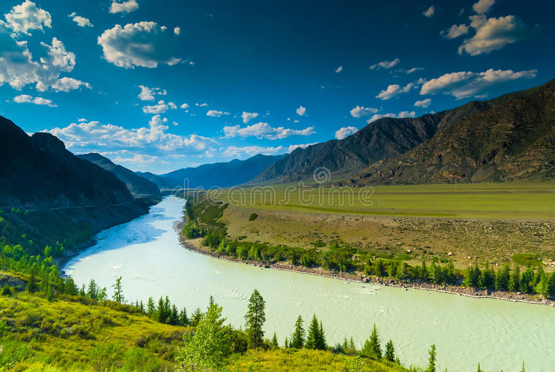 High mountains and lush meadows. Of Altai royalty free stock photo
