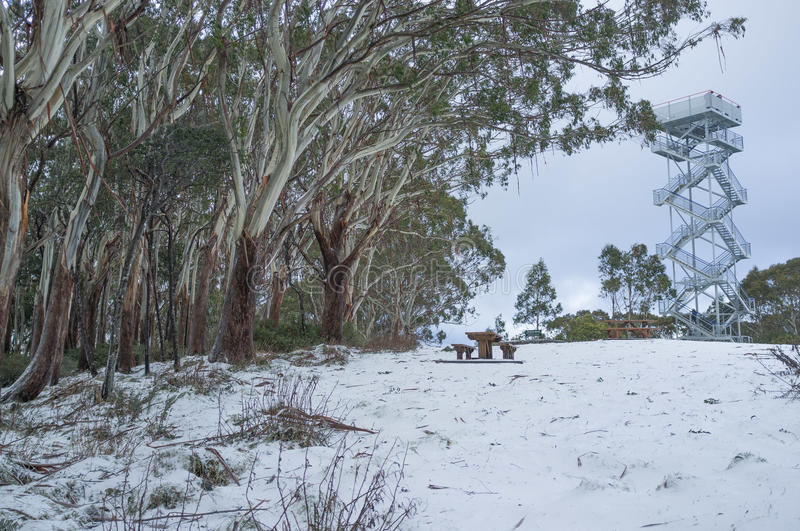 High observation tower on snowy Mount Donna Buang scenic lookout stock photography