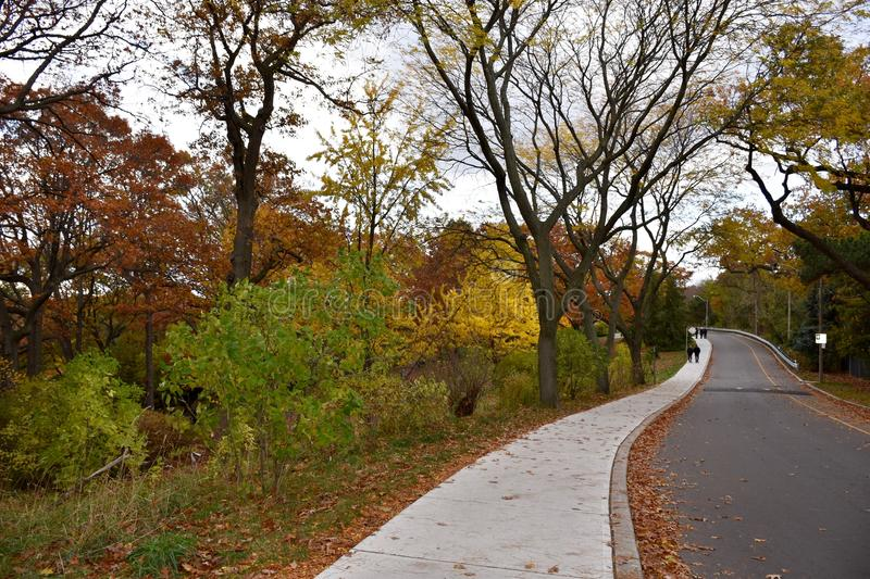 High Park in Toronto in Late Fall. A winding road and sidewalk in Toronto's High Park. It is late Fall and some trees along the road are already bare while stock photography