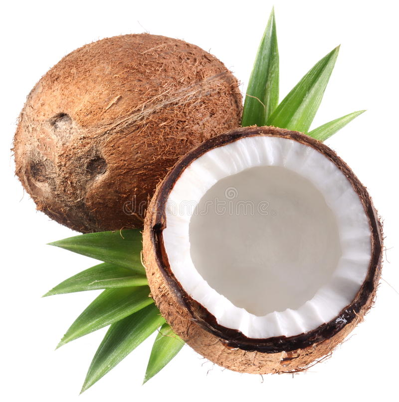 Download High-quality Photos Of Coconuts. Stock Photo - Image: 17760326