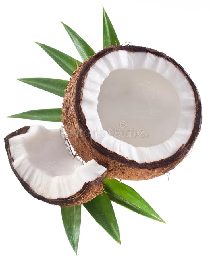 High-quality photos of coconuts.
