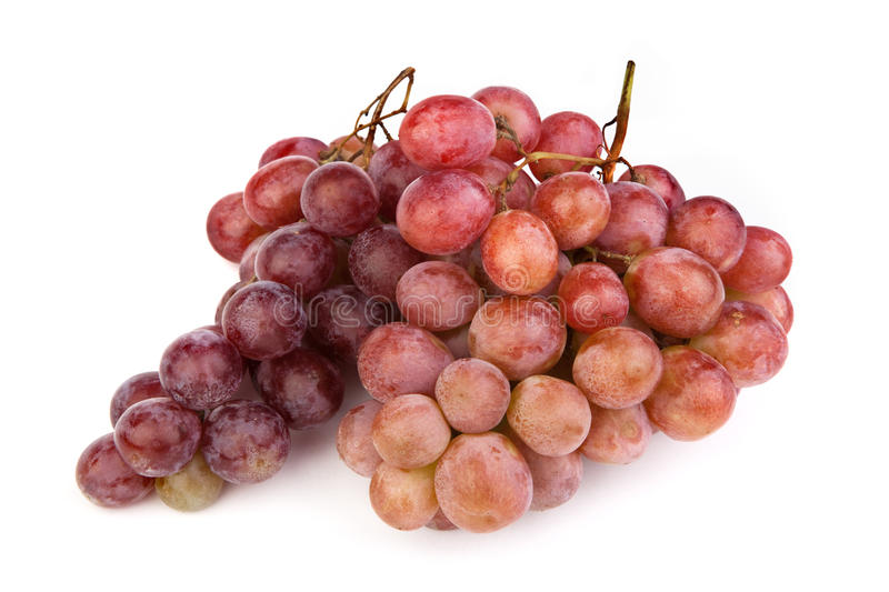 Download High Resolution Photo Of Dark Grapes On White Stock Photo - Image of grape, high: 11634524