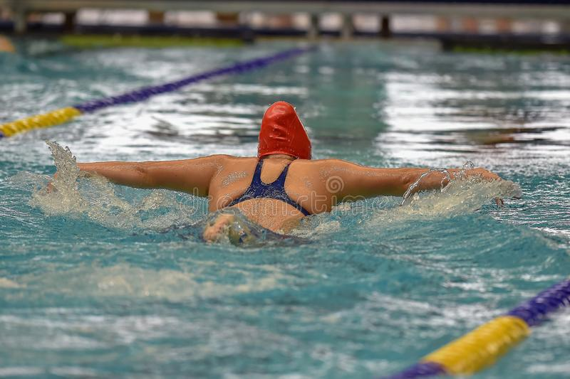Swimmers competing at a swim meet stock images