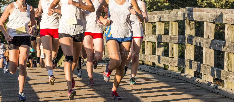 High school cross country girls race over a bridge stock photo