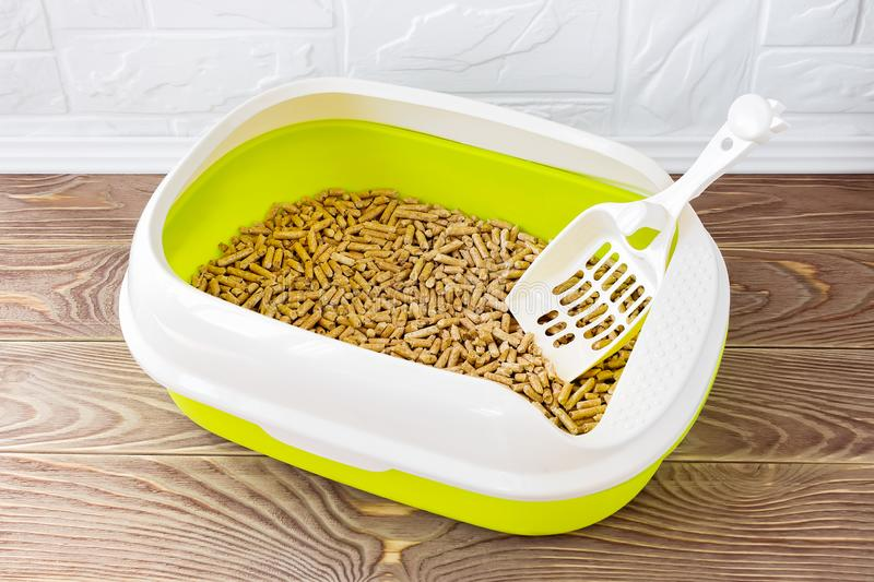 High sided cat litter tray with wooden pellets and scoop on a brown wooden floor. New green cat box near the wall. Toilet for stock photos