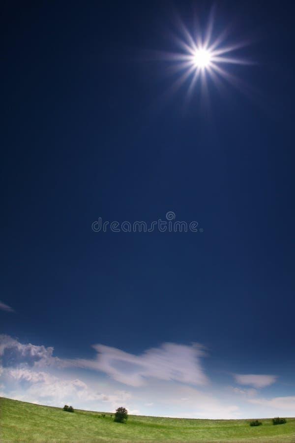 Download High Sun stock photo. Image of blue, veldt, grass, green - 949418
