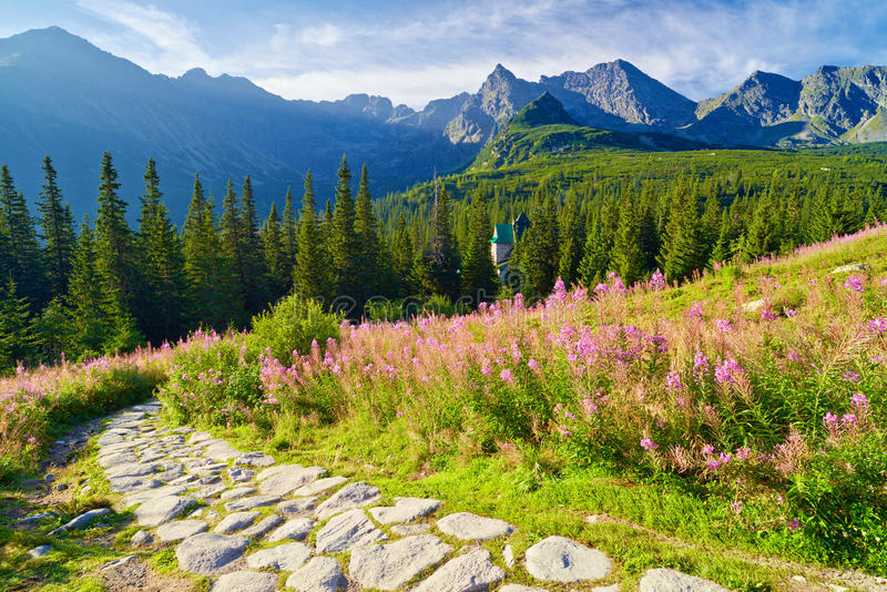 High Tatra Mountains trail landscape nature Carpathians Poland. Beautiful nature landscape Gasienicowa Valley trail High Tatra Mountains. Carpathians, Poland royalty free stock photography
