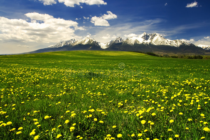 High Tatras mountains in Slovakia royalty free stock images
