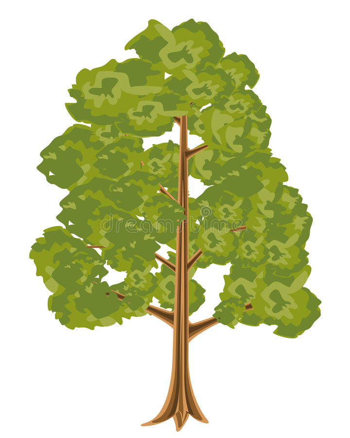 High Tree Royalty Free Stock Photo