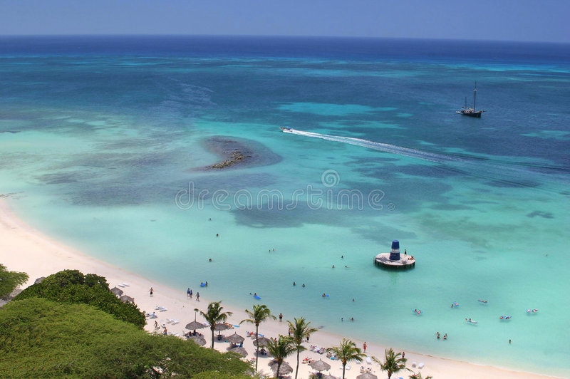 Download High view stock image. Image of excitement, aruba, fauna - 2913385